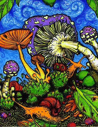 156aec6750bb3e483cde4cee77e7c507--mushroom-ideas-mushroom-art
